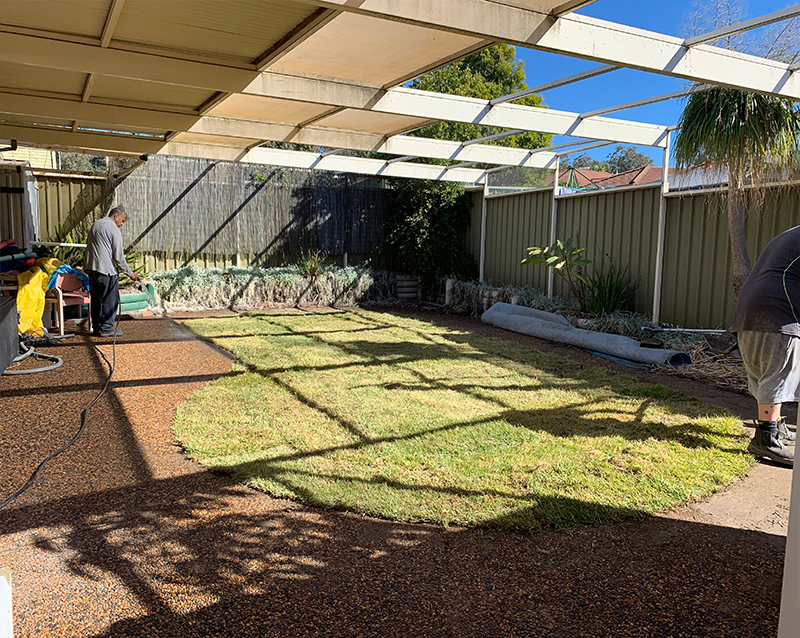 Watering on Grasses by Jam Pool Removals team