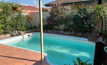 Above and Below Pool Removals